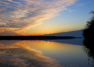 Sunrise over a calm Mississippi river with a large flock of geese in the distance in Port Louisa NWR by Jessica Bolser / USFWS